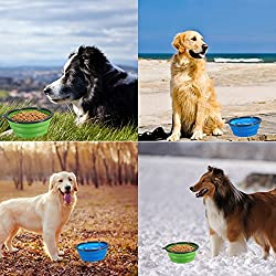 Silicone Folding Dog Bowl