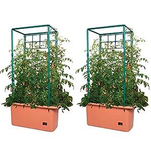 Amazon.com : Hydrofarm 10 Gallon Self Watering Tomato