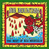Best Of Big Mountain, The