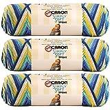 Bulk Buy: Caron Simply Soft Stripes 100% Acrylic Yarn (3-Pack) ~ 4 oz. Skeins (Madison Avenue)