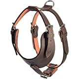 Hide & Drink, Thick Leather Adjustable Dog Harness, No-Pull Pet Harness, Outdoor Pet Vest, Handmade Includes 101 Year Warranty :: Bourbon Brown