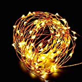 ESICOO LED String Lights Dimmable Waterproof for