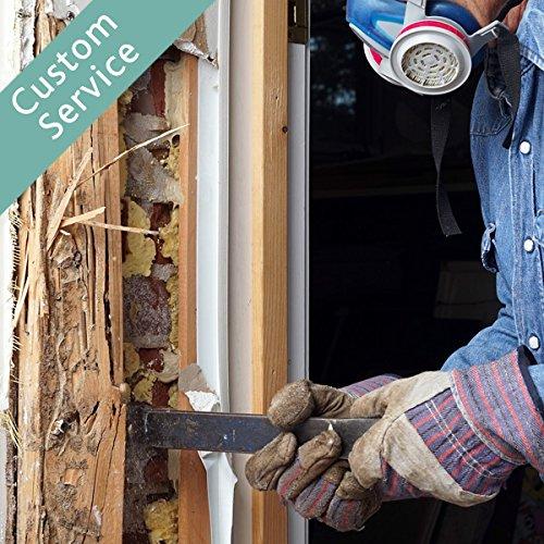 termites-pest-control-project
