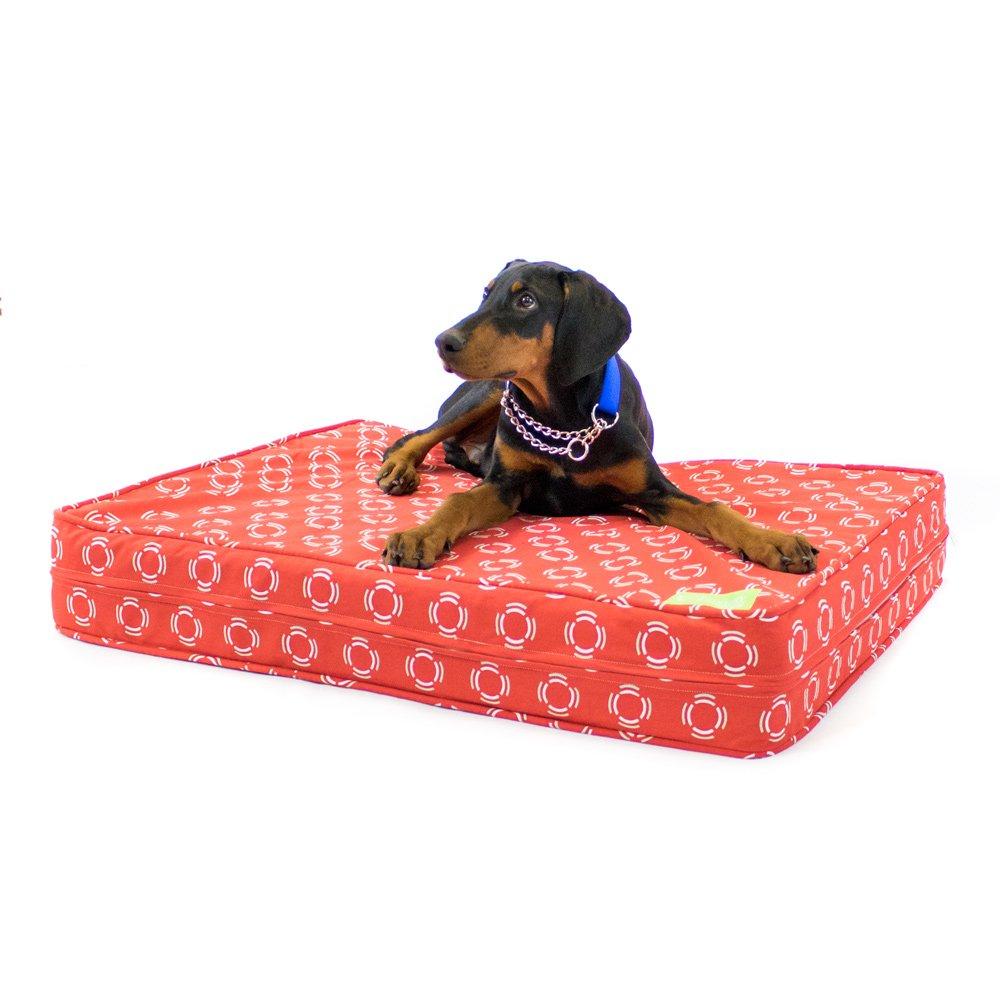 Látex Natural Cama Ortopédica para Perros | 13 cm de grosor suave/firme Reversible comodidad | 100% algodón funda extraíble w/resistente al agua, ...