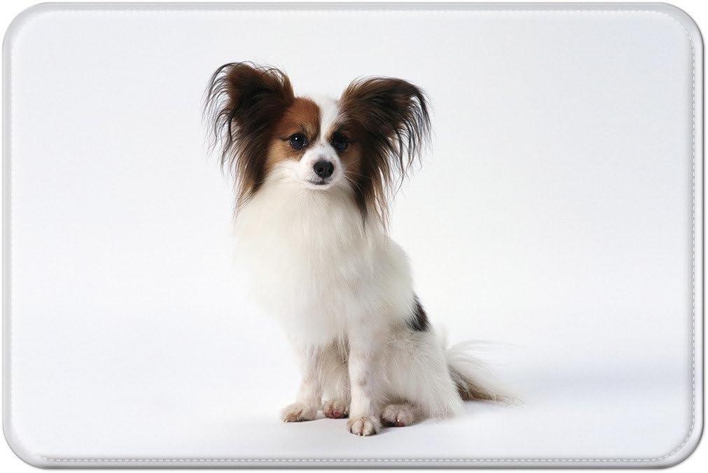 violetpos Felpudo Beagle de cachorros de perro de felpudos Mat para interior y exterior, 45 x 75 cm: Amazon.es: Hogar