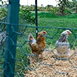 YARDGARD 308452B Poultry Netting Fence 24 Inch x 25