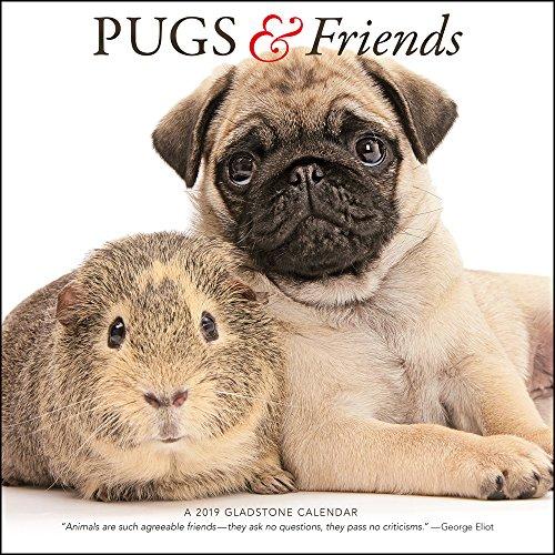2019 Pugs & Friends Calendar (Friends Calendar)
