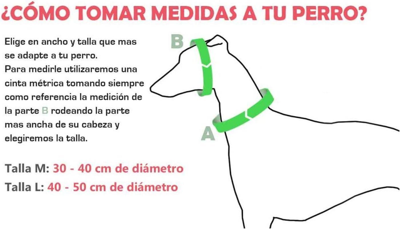 Galguita Amelie - Collar martingale antiescape para perros de todo ...