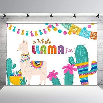 Mehofoto Fiesta Llama Backdrop A Whole Fun Birthday Backdrops Party Cactus Below Mexican Theme