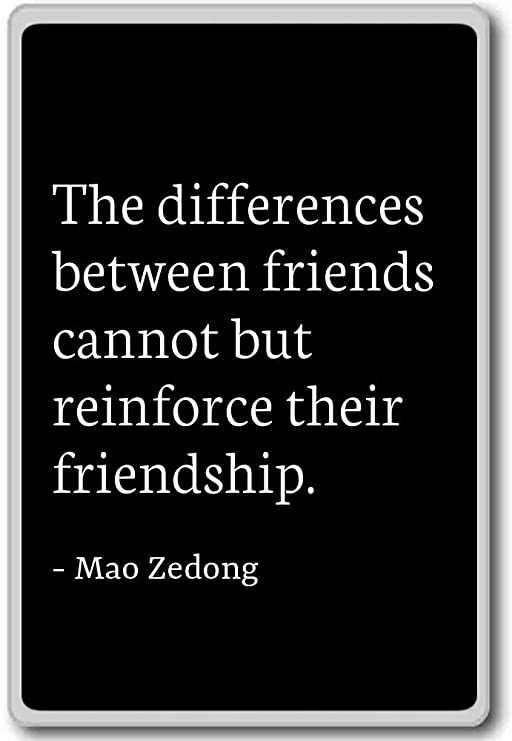 photomagnets the differences between friends cannot but reinf