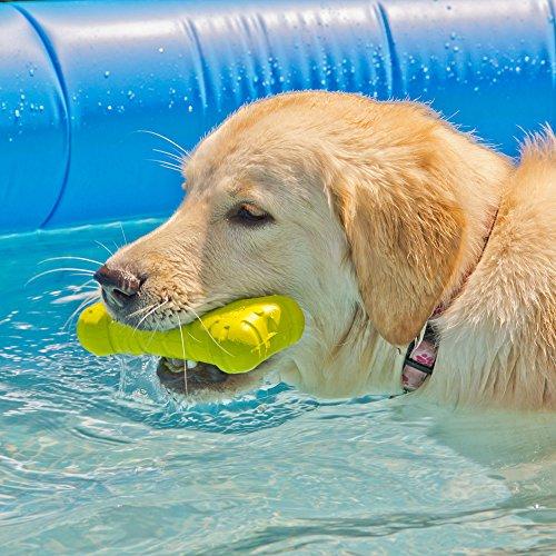 Hyperactive Puppy: Hyper Pet Chewz Bone Dog Toy