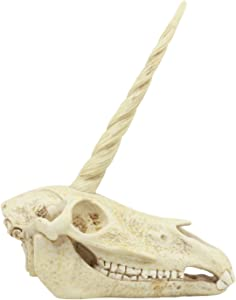 Ebros Ancient Fossil Unicorn Skull Statue Rare Mythical Creature Skeleton Model Great Gift for Archaeologists Excavation Adventurers and Collectors