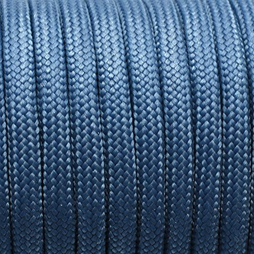 100ft 550 Paracord Parachute Cord Lanyard Mil Spec Type III 7 Strand Core (Color 124) ()