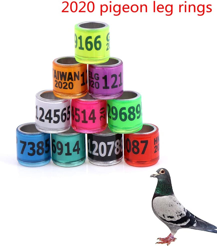 colore casuale canarini pappagalli Anelli da corsa in alluminio fringuelli BraveWind per piccioni pollame