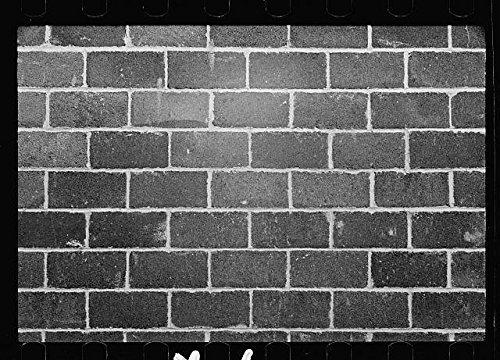 photo-greenbeltmarylandmdsuburban-resettlement-divisioncinder-block-wallfsa