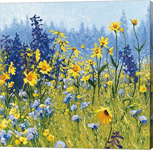 Joyful in July III by Shirley Novak Canvas Art Wall Picture, Gallery Wrap,