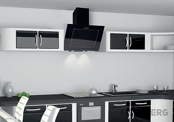 Nort Berg Dynamic Campana extractora, pared, 60 cm, acero inoxidable: Amazon.es: Hogar