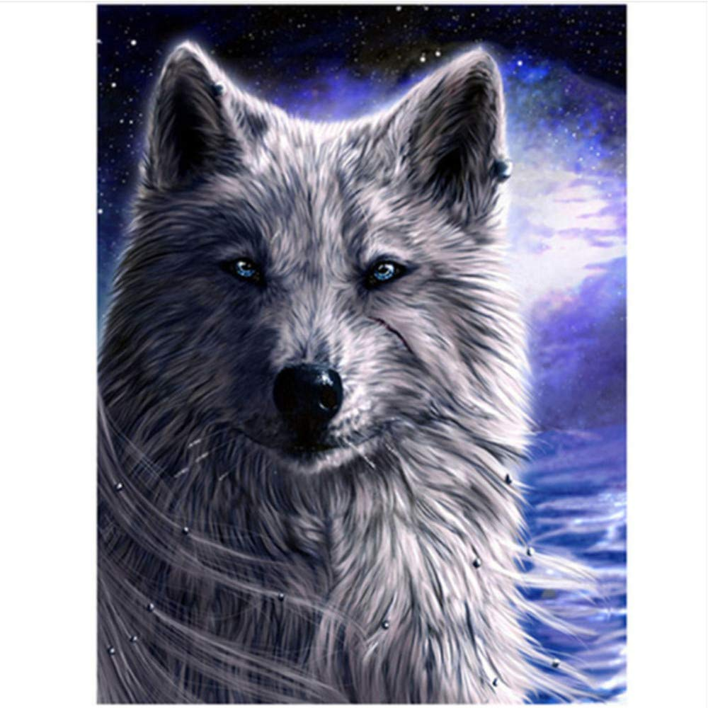 For Adult with Brushes Cold Cold Cold Wolf DIY Oil Painting Kit On Canvas Acrylic Painting-Rahmen 40X50Cm B07PG4H35Y | Lebendige Form  d4db20