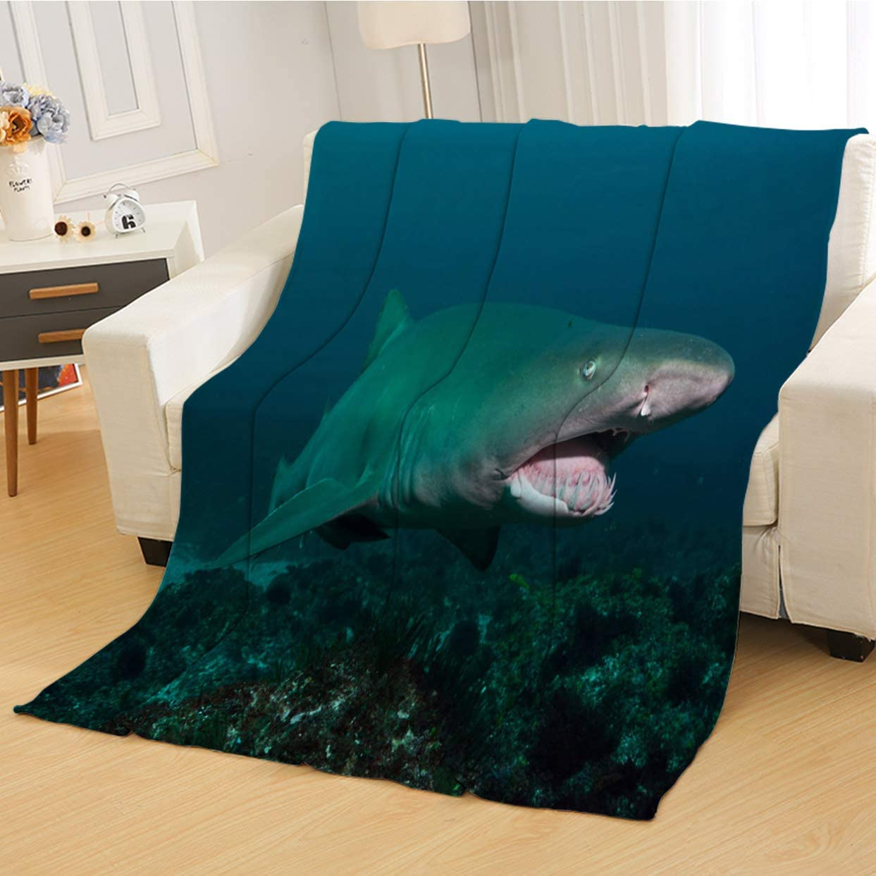 RLDSESS Grey Soft Twin Blanket, Soft Weighted Blanket,Grey Nurse Shark Tweed Heads New South Wales Australia,Super Soft Blanketry for Bed Couch,Twin Size: 50Wx70L inch