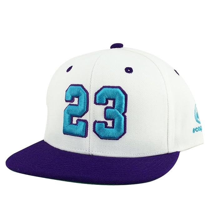 Image Unavailable. Image not available for. Color  Number  23 White Purple  Aqua Visor Snapback Hat Cap X Air Jordan Grape Hornets Color 905bc74d4a94