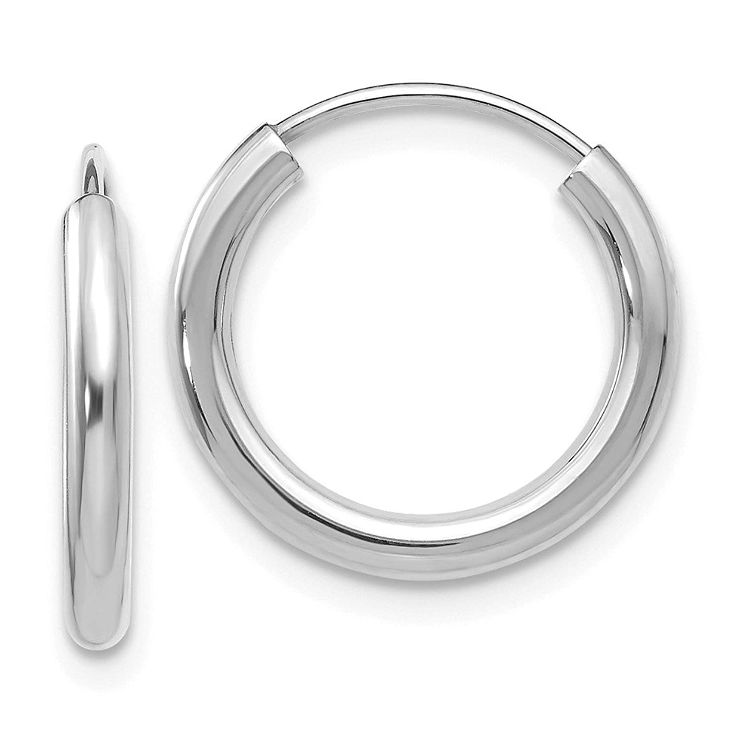 14kt White Gold Polished Endless 2mm Hoop Earrings