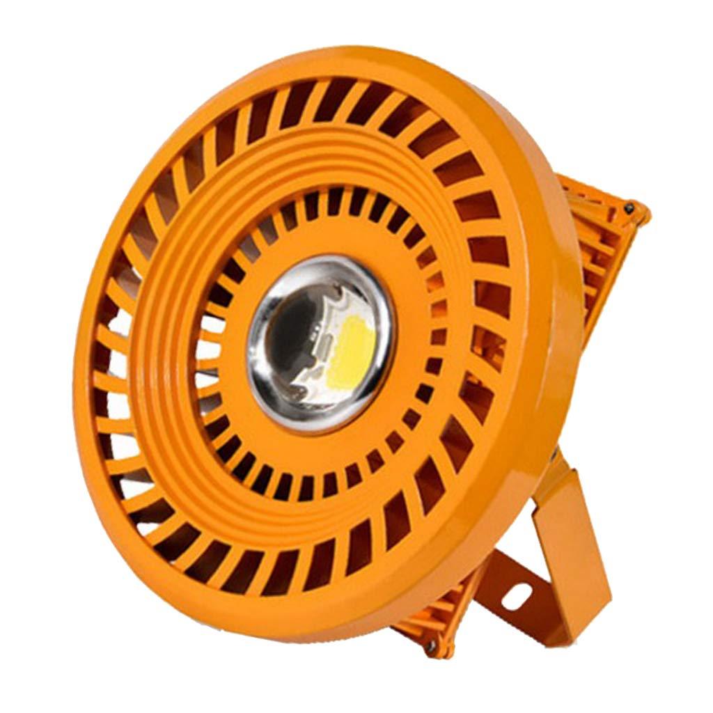 B Blesiya LED Wandleuchten Spot Licht Flutlicht für Innen oder Außen Beleuchtung, 20W / 30W / 50W - Kaltes Weiß, 50w