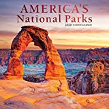 America s National Parks 2020 12 x 12 Inch Monthly Square Wall Calendar with Foil Stamped Cover by Plato, Yosemite Yellowstone