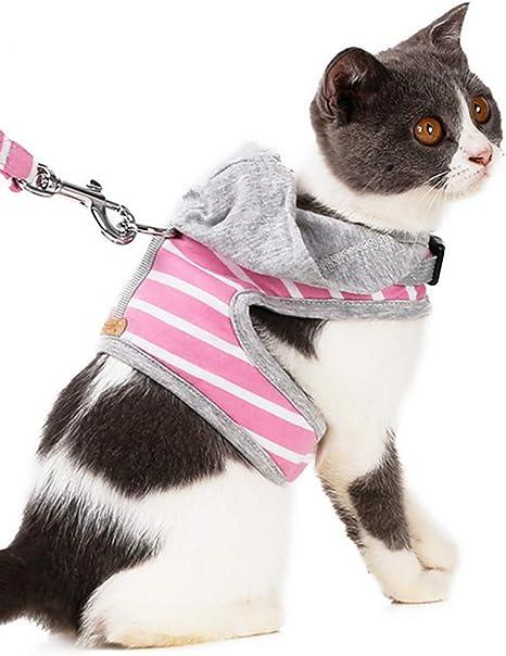 Haol Arnés para Perros Arnés para Gatos Chaleco Acolchado cómodo ...