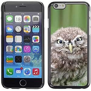 Be Good Phone Accessory // Dura Cáscara cubierta Protectora Caso Carcasa Funda de Protección para Apple Iphone 6 Plus 5.5 // Funny Evil Owl