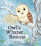 Owl's Winter Rescue (Animal Seasons)