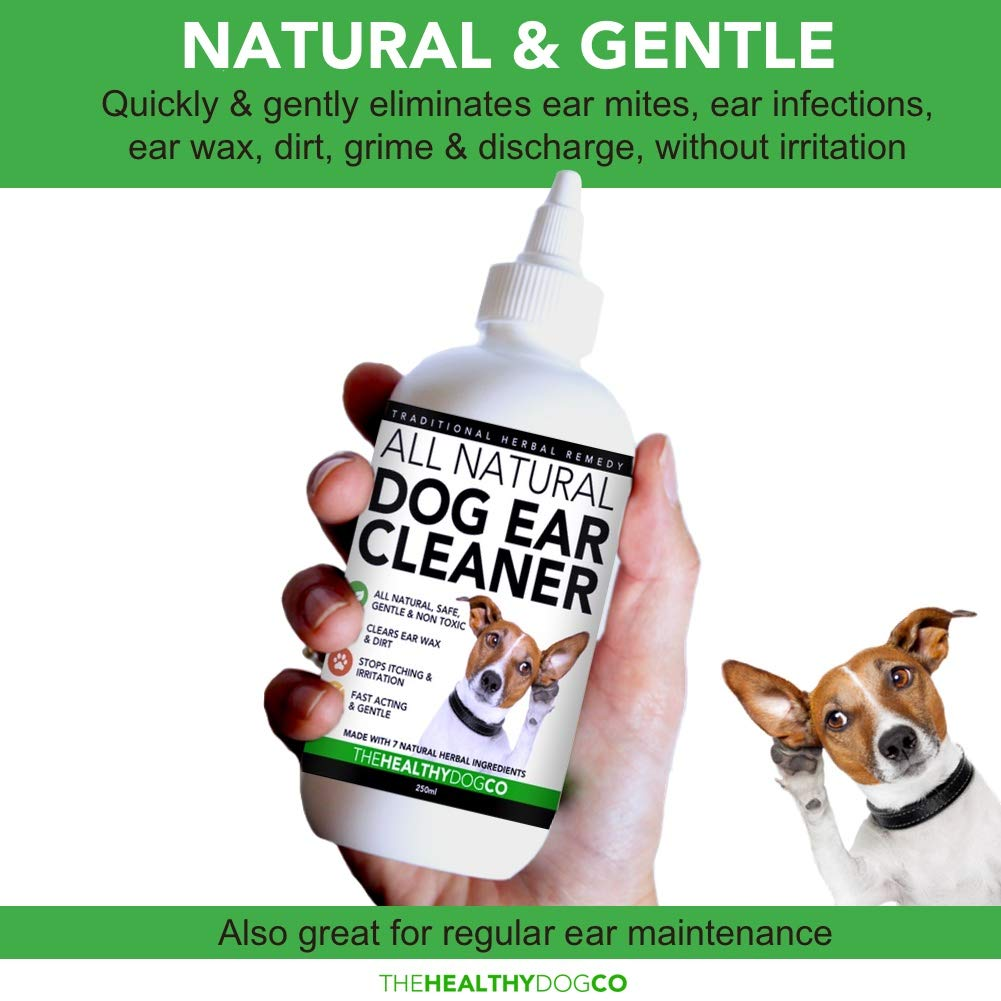 All Natural Dog Ear Cleaner | 250ml | Works in 2-3 Days | Eliminates  Smells, Itching & Discomfort | Voted the Best, Safest Dog Ear Wash For Dogs  With