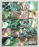 Yuan's 25 pcs 1.5cm(0.59'') Square Sea Green Abalone Paua Shell. One or Two Side Polished. (1.5cm(0.59'') Squate x25 pcs Green Abalone-B-Normal)