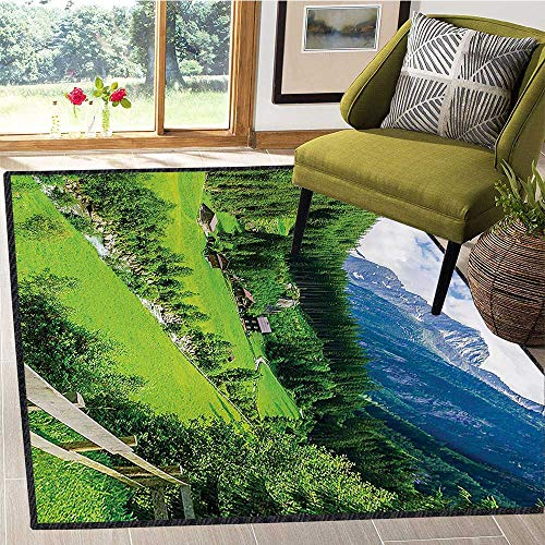(Mountain, Area Rug Door Mat, Alpine Landscape with Meadow Cottages and Pines Stream in Village View Print, Door Mat Outside 6x8 Ft Green White)