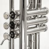 Sky Band Approved Nickel Plated Bb Trumpet with Case, Cloth, Gloves and Valve Oil, Guarantee Top Quality Sound