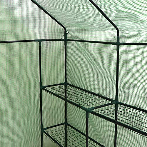 Mini Walk-in Greenhouse Indoor Outdoor -2 Tier 8 Shelves- Portable Plant Gardening Greenhouse (57''L x 57''W x 77''H), Grow Seeds & Seedlings, Herbs Flowers or Tend Potted Plants by Nova Microdermabrasion (Image #5)