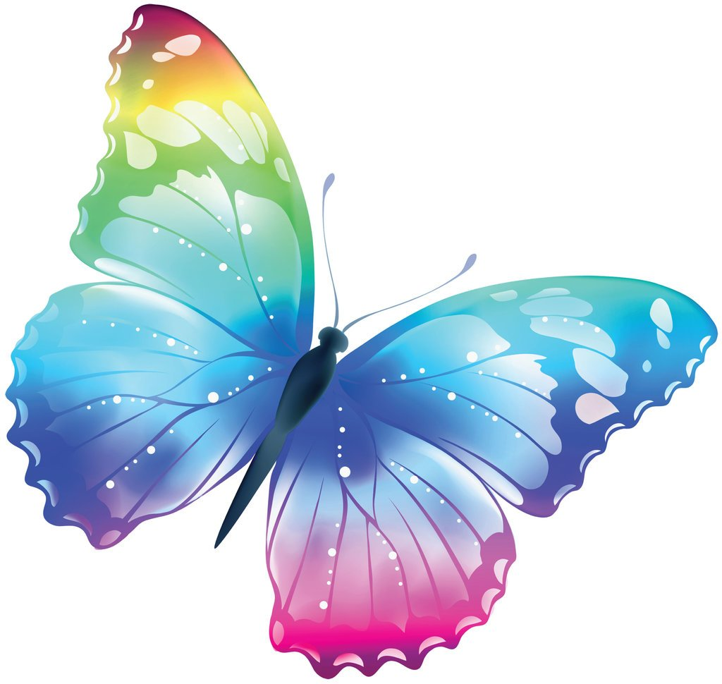 Frankies Cajun Customs Multicolored Butterfly Vinyl Decal Wall, Car, Laptop - 48 inch