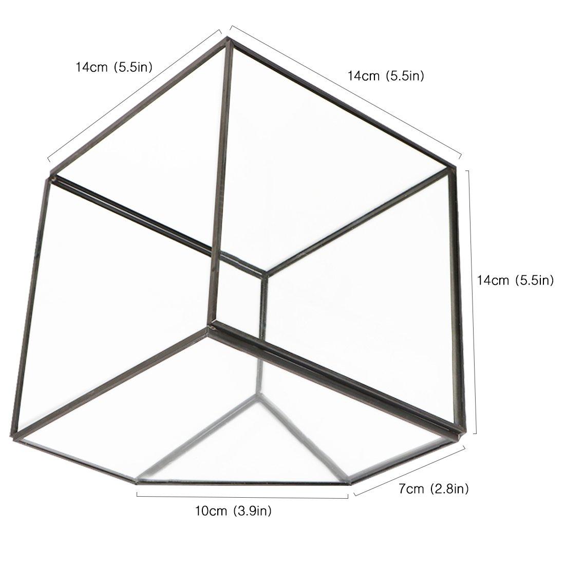 kilofly 3 Glass Terrarium Cube Tabletop Succulent Planter Flower Container Pot