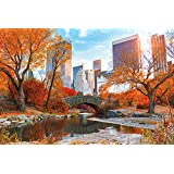 "New York Poster Central Park Autumn (36""x24"")"