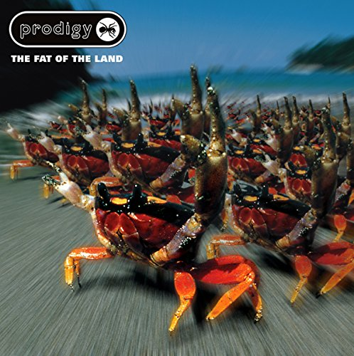 The Prodigy - Fat Of The Land (Expanded Edition) - Zortam Music