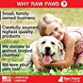 Raw Paws Pet Organic Virgin Coconut Oil Supplement for Dogs & Cats - Relieves Itchy Skin - Immune Support - Digestive Aid - Hot Spot Treatment - Arthritis Pain Relief - Hairball Remedy by Raw Paws Pet, Inc.