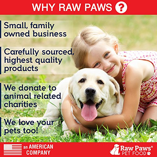 Cheapest Raw Paws Pet Probiotics for Dogs along with Prebiotics Functional Treats Pumpkin Ginger 10 ounce soft Chews Made in USA Only 2 Billion CFUs Supports Digestive health and wellness Diarrhea Relief Check this out