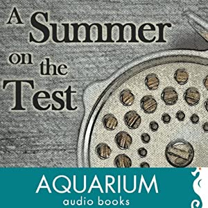 A Summer on the Test Audiobook