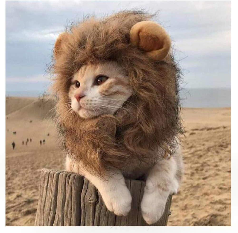 Collo: 28cm, S Parrucca di Leone per Animale Halloween Carnevale Party Animale Autunno Inverno Vestire Costume Vestiti per Cani e Gatti EONAZE Regolabile Costume da Criniera Leone per Gatto
