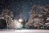 CSFOTO 7x5ft Christmas Background Winter Night Photography Backdrop Street Lamp Snowflakes Tree Park Winter Landscape New Year Holiday Photo Booth Shoot Digital Studio Props Polyester Wallpaper