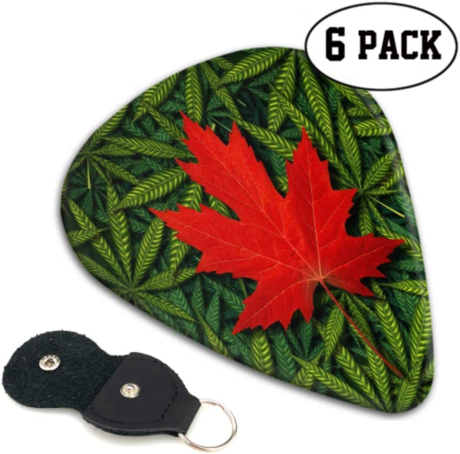 Concepto de marihuana canadiense y cannábico Cannabis Law Bass Guitar Pick Holder Thin Guitar Picks 6 Pack Heavy 0.46 0.71 0.96 Mm Regalo para bajo, eléctrico