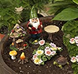 Set of 7 Cute Miniature Garden Gnome Scene Figurines for Terrariums, Miniature Gardens, and Fairy Gardens (Gnome, Flowers, Turtle, Tree House) For Sale