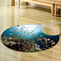 Round Area Rug coral sun ocean and fish  Living Dinning Room & Bedroom Rugs -Round 31