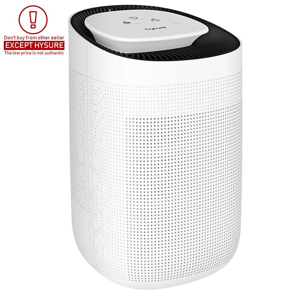 Hysure Quiet and Portable Dehumidifier Electric, Deshumidificador, Home Dehumidifier for Bathroom, Crawl Space, Bedroom, RV, Baby Room (1000ML)