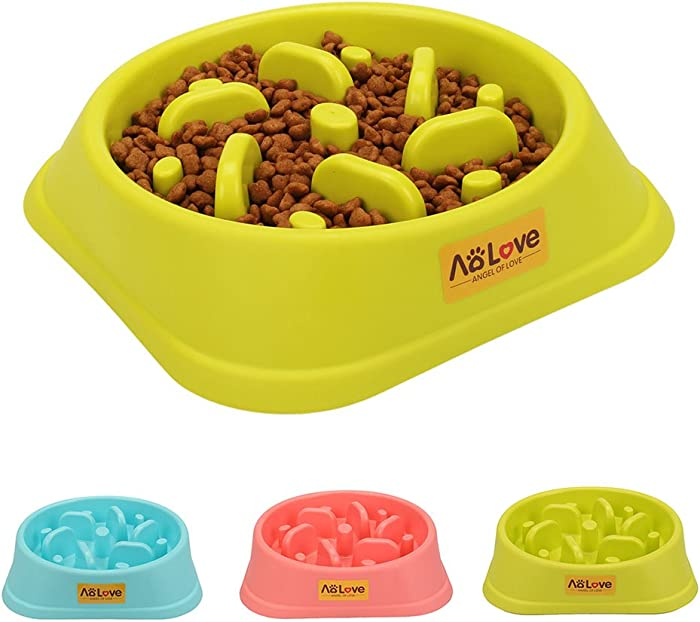 Top 10 Promise Pets Lime Green Pet Food Bowl