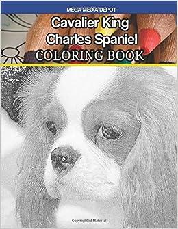 Amazon Cavalier King Charles Spaniel Coloring Book 9781546857150 Mega Media Depot Books